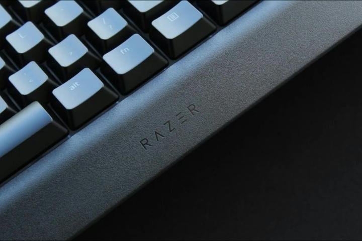 Razer_Cynosa_V2_05.jpg