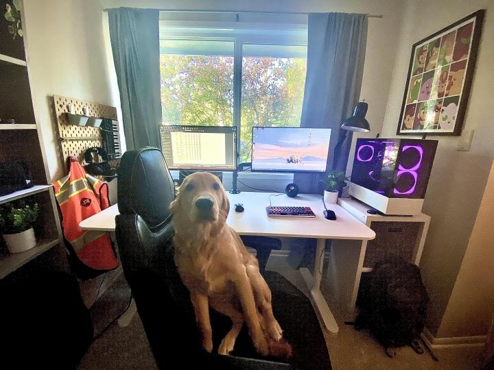 Show_Your_PC_Desk_Part207_26.jpg