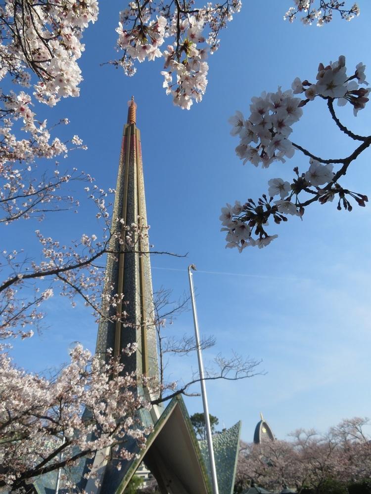 ⑮「さくらの水子供養塔」茨木弁天