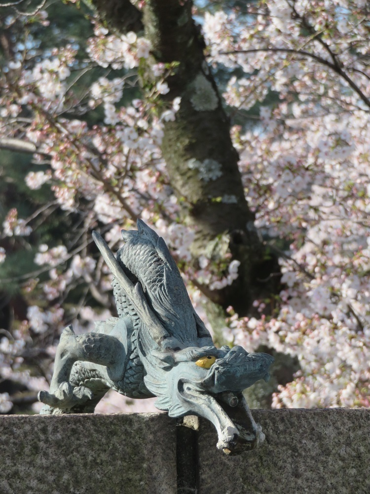 ⑯「花と竜」茨木弁天