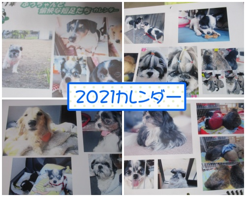 1019-a1_202010191503466f1.jpg