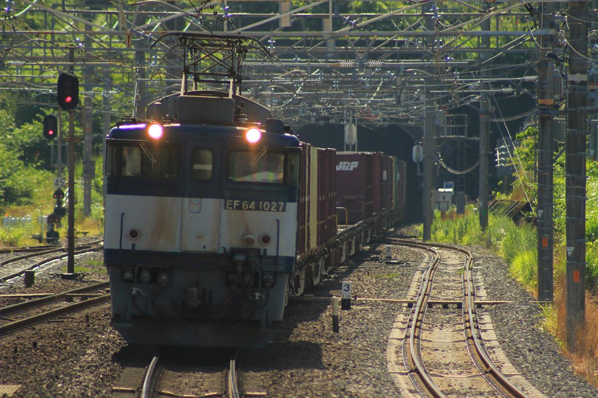 B56A5084.jpg