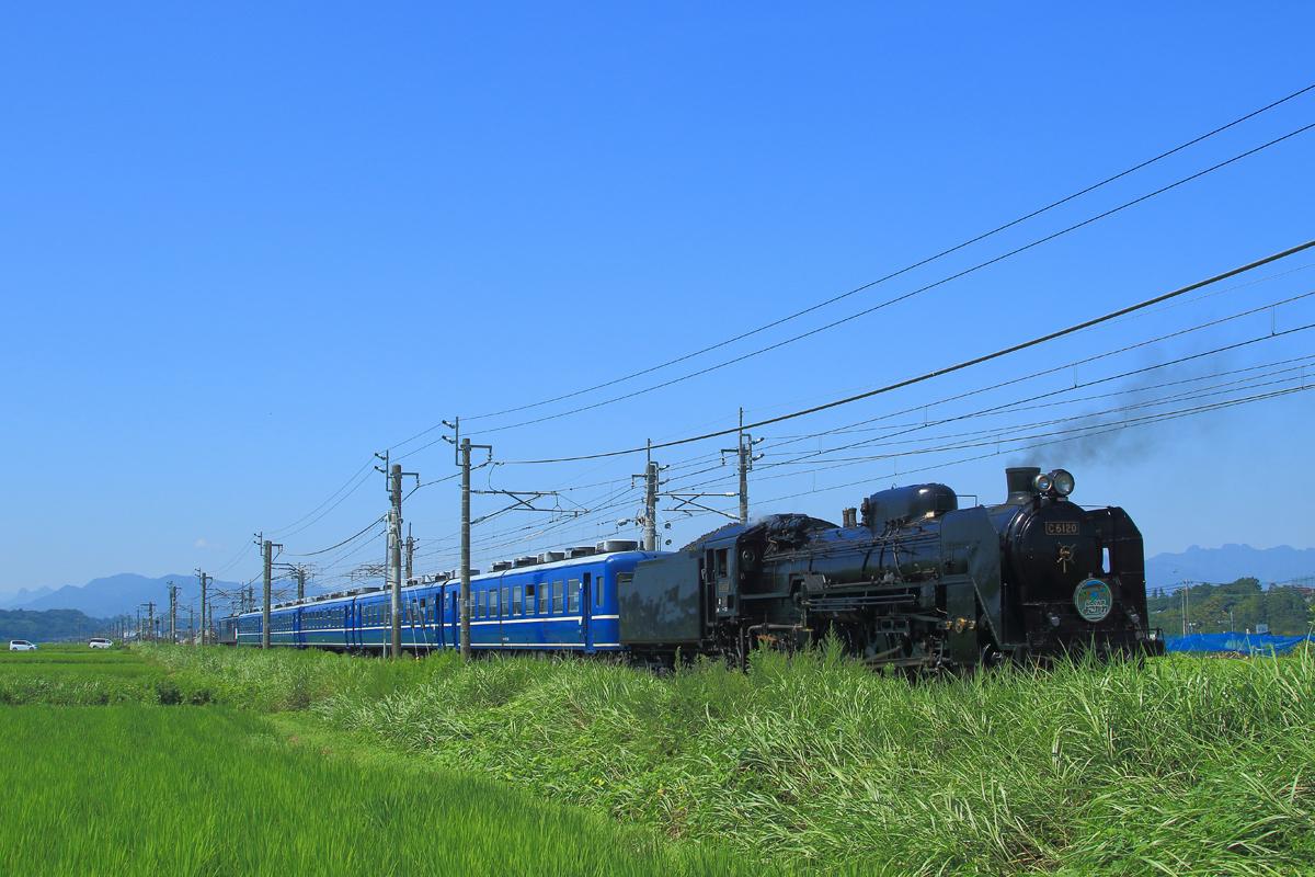 B56A5976.jpg