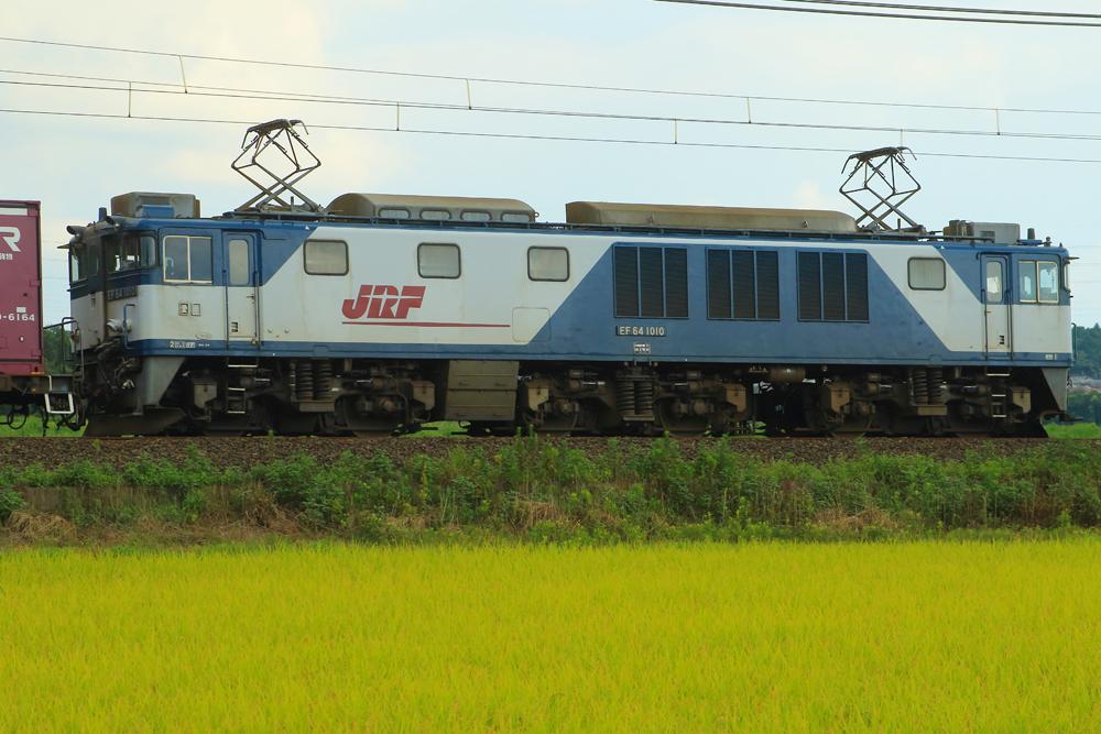 B56A6095.jpg
