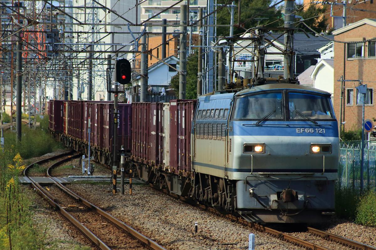 地 東海道 撮影 貨物 線