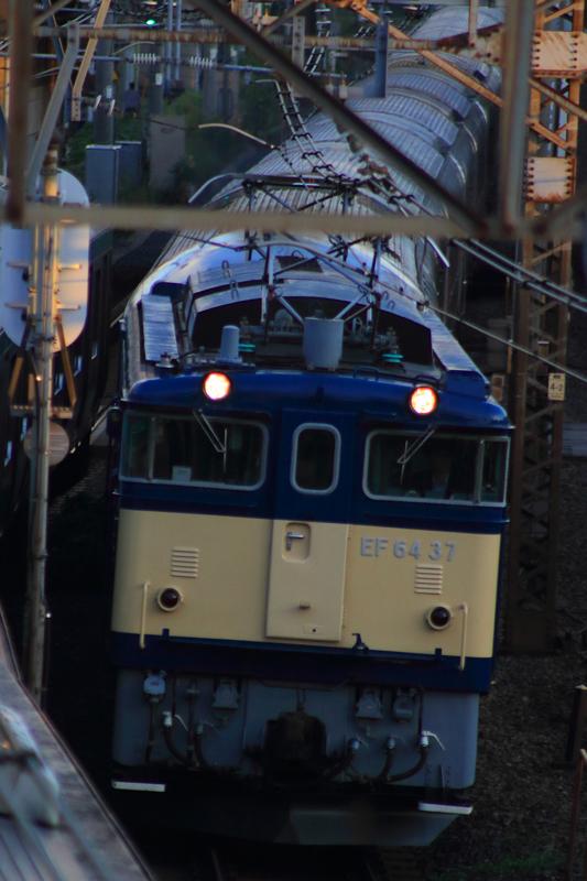 B56A6907.jpg