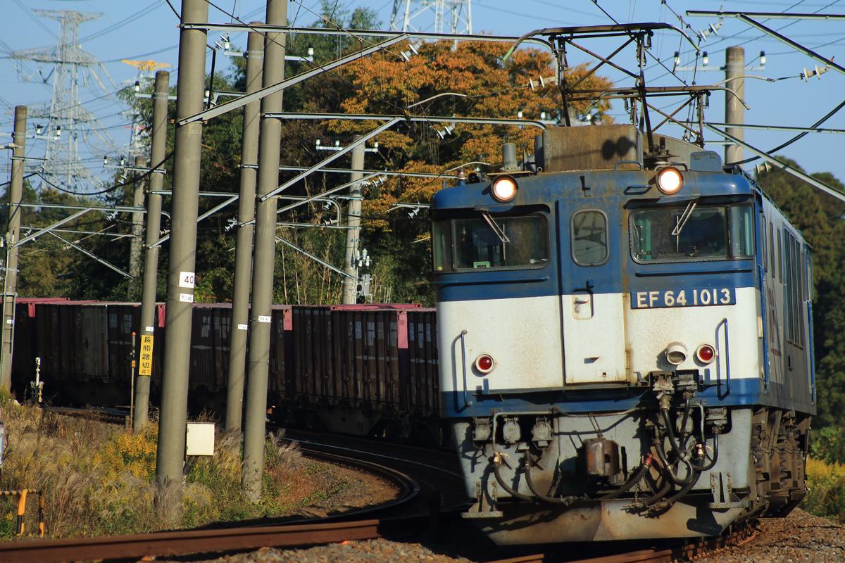B56A7300.jpg