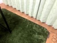 緑色のカーテン