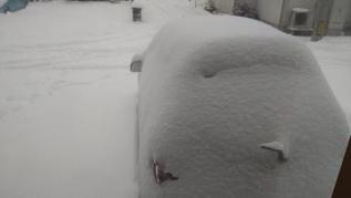 snow@202102180001.jpg