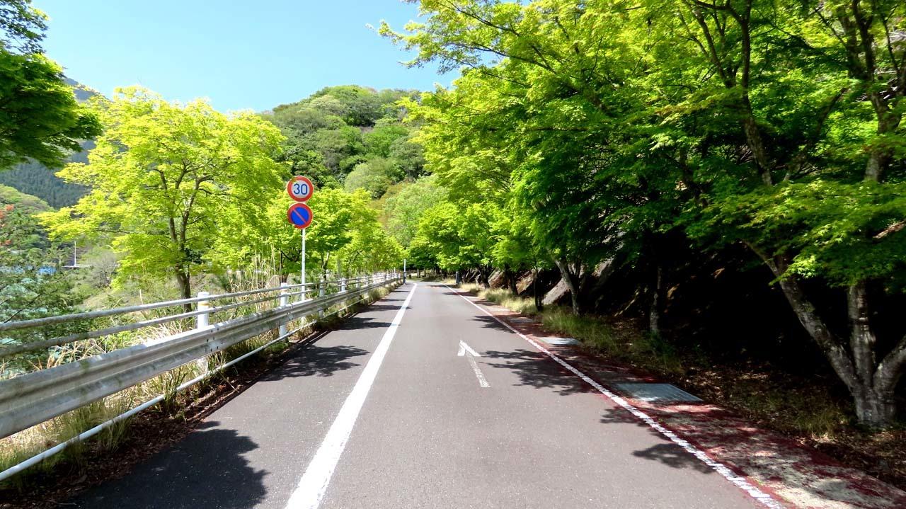 chiyo21-04.jpg